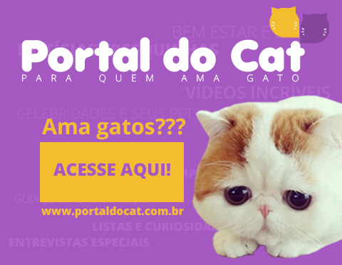 portal do cat