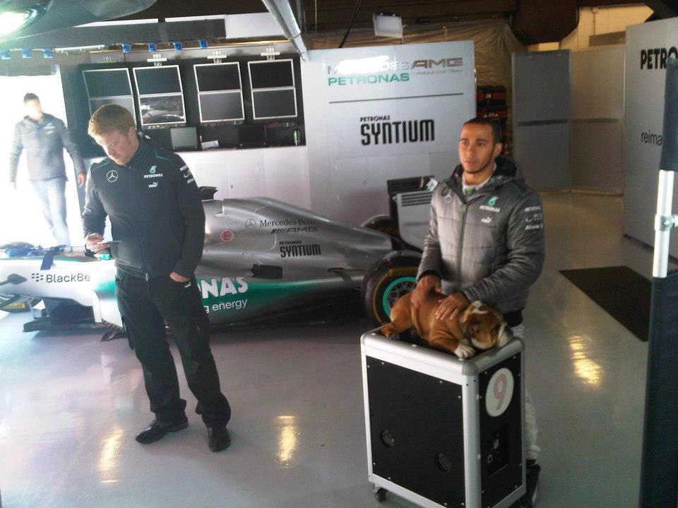 Lewis Hamilton e Roscoe na F-1