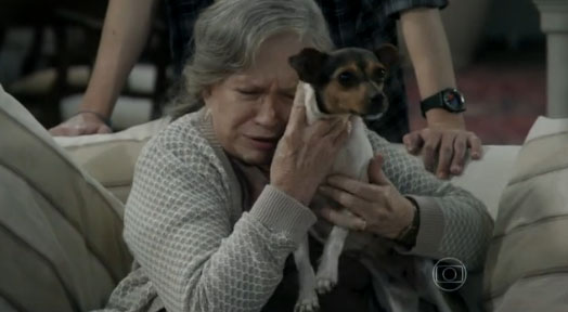 amor a vida cachorro adocao bernarda 2 Walcyr Carrasco emociona ao tocar sobre o assunto de abandono e adoção de animais