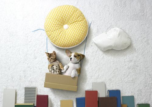 hills comercial cachorro gato 03 A vida é uma aventura é o conceito do comercial da Hills