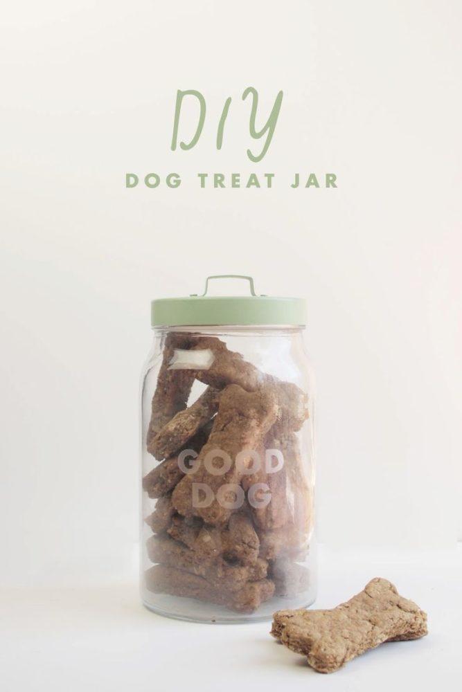 boas-ideias-cachorro (51)