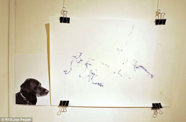 exposicao-artistas-cachorros-02