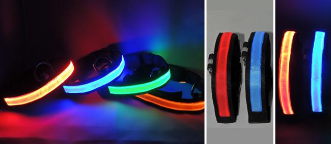 Coleira de LED da loja Juro que não morde. Foto: Reprodução/Juro que não morde