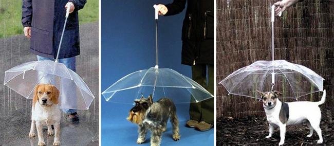 Guia guarda-chuva da loja Juro que não morde. Foto: Reprodução/Juro que não morde