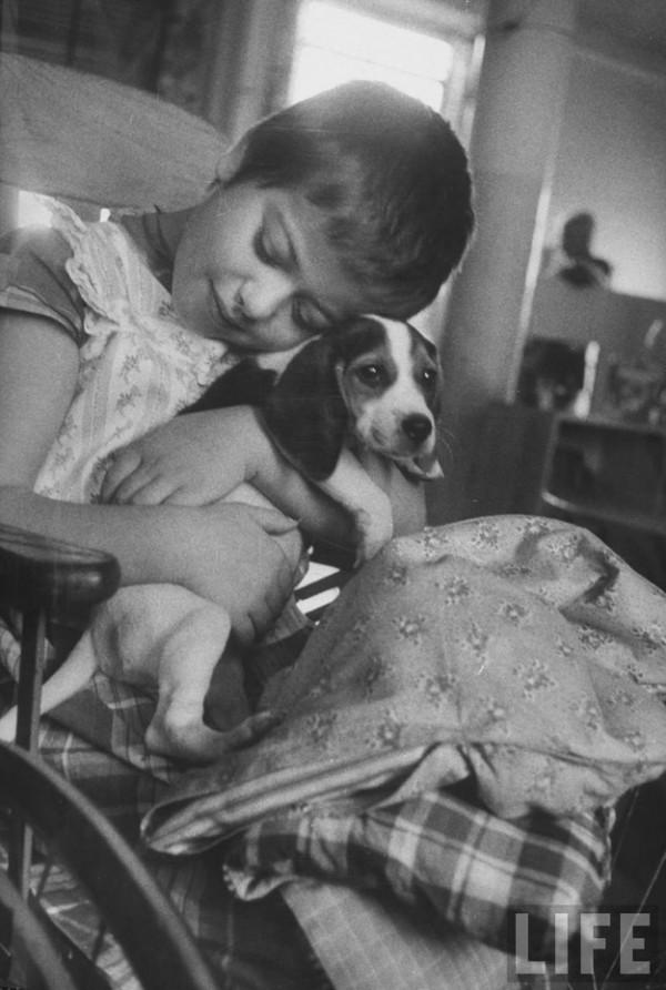 Fracis- Miller-animais-terapia-animal-06
