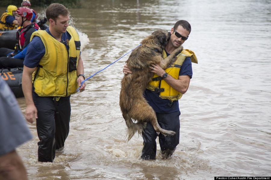Os bombeiros Matt Harvey e Michael Cooper no resgate da cachorra Panda. (Foto: Reprodução / Facebook)
