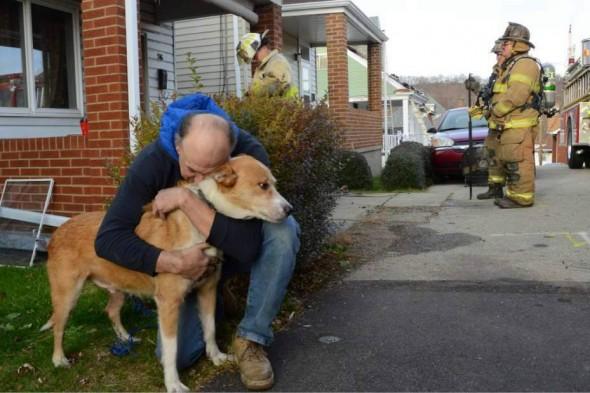 George abraça Pedro após salvar sua vida. Foto: Reprodução / Life With Dogs