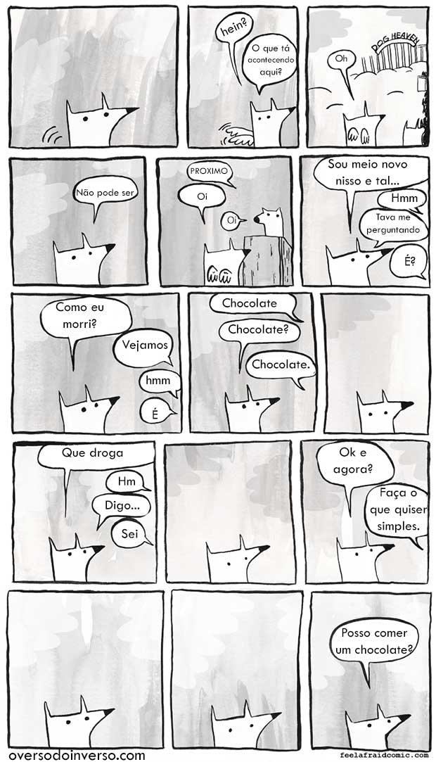 ceu-canino