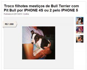 Filhotes em troca de iPhone. Foto: Reprodução