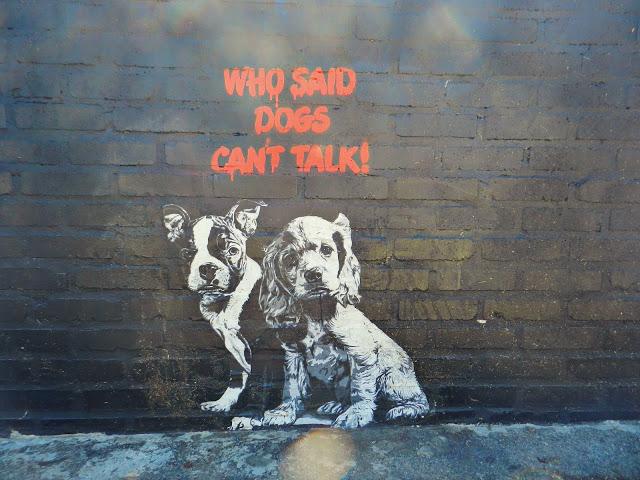 graffiti-artistas-rua-cachorro-07