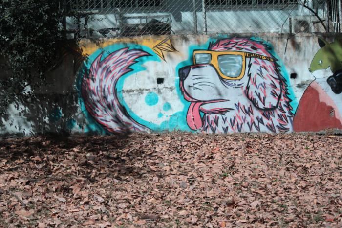 graffiti-artistas-rua-cachorro-09