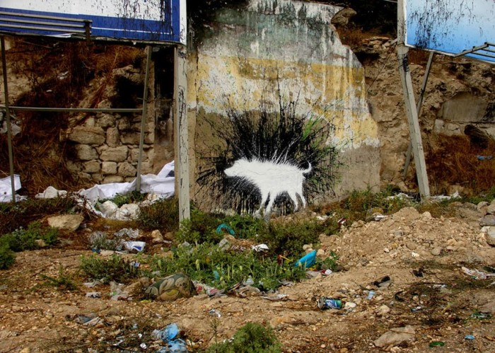 graffiti-artistas-rua-cachorro-12