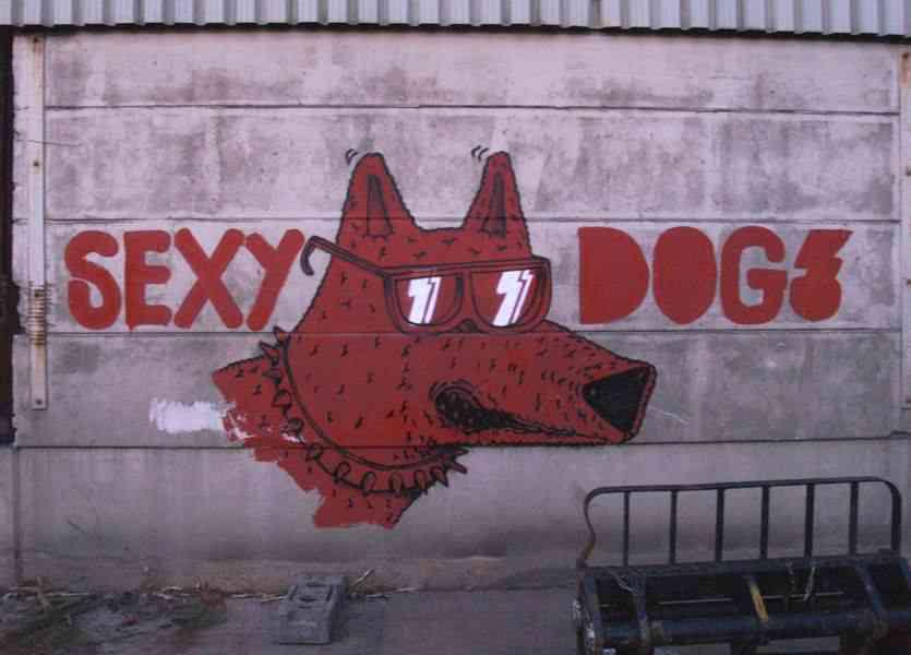 graffiti-artistas-rua-cachorro-13