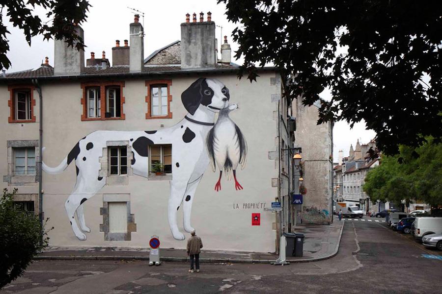 graffiti-artistas-rua-cachorro-14