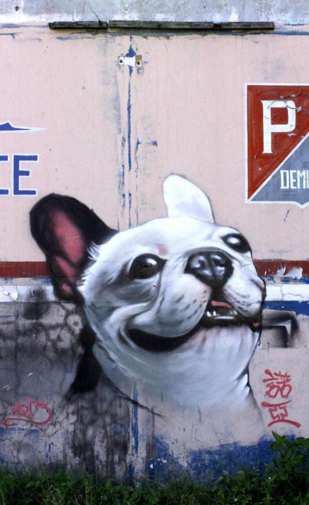 graffiti-artistas-rua-cachorro-15