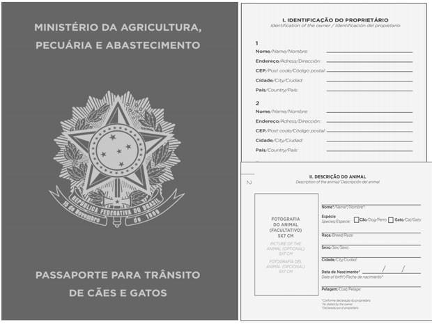 (Foto: Reprodução / Diário Oficial da União)