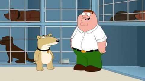 Vinnie é o novo cachorro da família. Foto: Reprodução / Fox