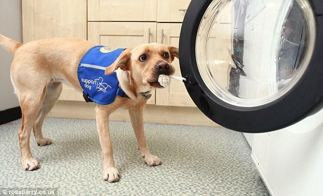 woof-machine-maquina-lavar-cachorro-04