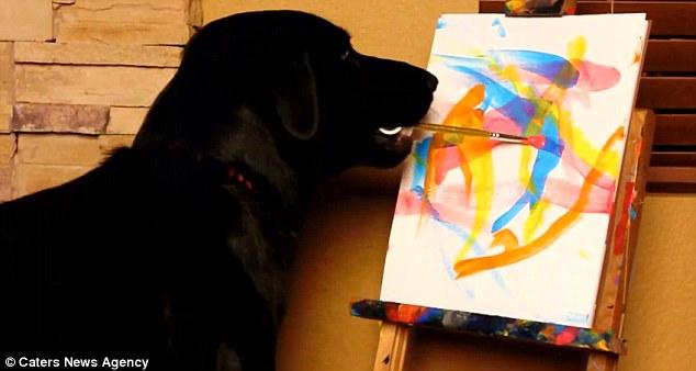 Arbor pinta quadros e ajuda outros animais resgatados. Foto: Reprodução / DailyMail