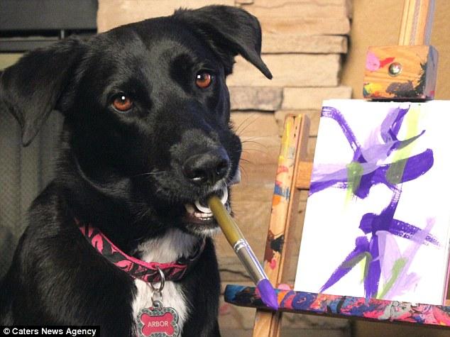 Arbor, cachorra resgatada da rua, pinta quadros para ajudar outros animais
