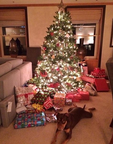 Gisele Bundchen publicou uma foto da cachorra Lua ao lado da árvore de natal.  (Foto: Reprodução / Instagram)