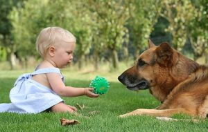 Cachorros ajudam na imunidade das crianças. (Foto: Reprodução / Google)