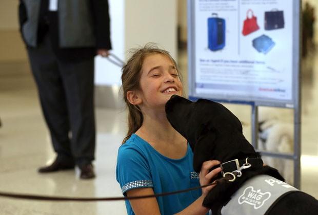 cachorros-servico-aeroporto-sao-francisco-01
