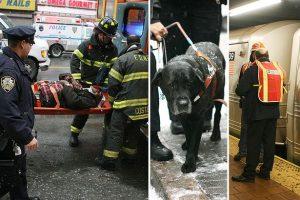 Após o acidente que levou Cecil Williams e seu cachorro a cairem nos trilhos do trem. Foto: Reuters/Splash
