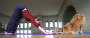 Tutora e seu cão praticando Doga. Foto: Reprodução/Google Images