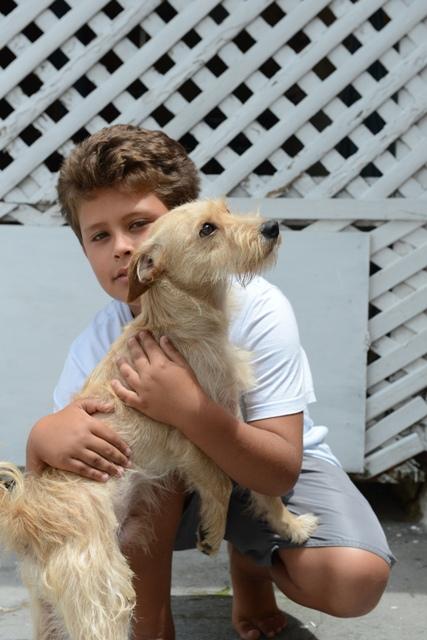 Jean com o cachorro Mel. (Foto: Reprodução / ANDA)