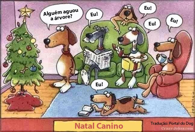 natal-canino