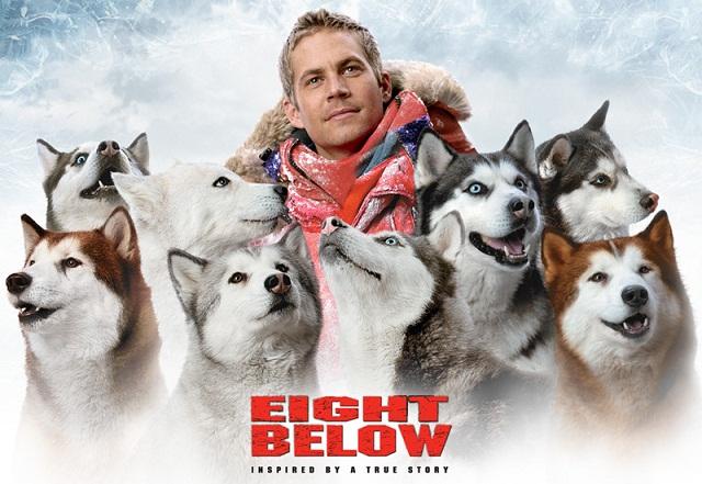 """Paul Walker contracenou com diversos cachorros da raça husky siberiano no filme """"Abaixo de Zero"""". (Foto: Reprodução / Google)"""