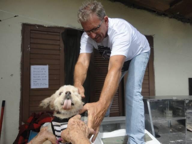 Resgate de animais na Praia Grande. (Foto: Reprodução / Facebook OFA-PG)