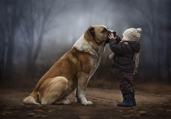 Elena-Shumilova-fotografia-animais-01