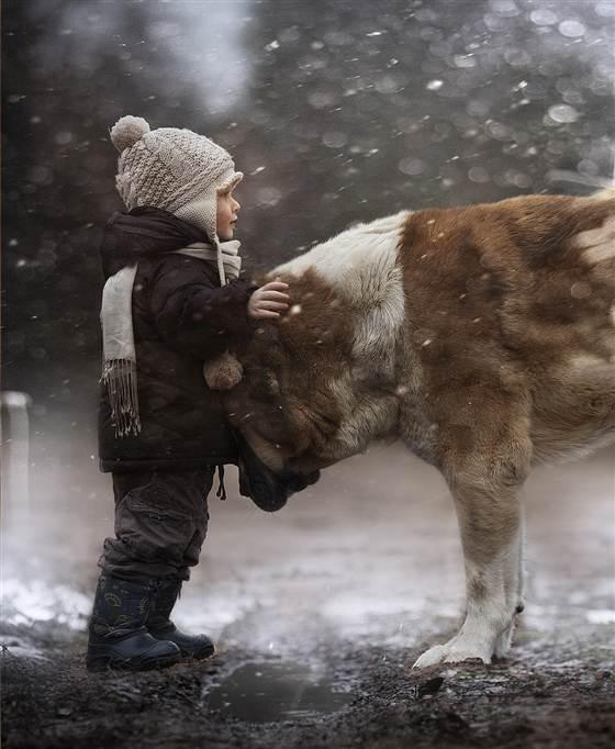 Elena-Shumilova-fotografia-animais-04