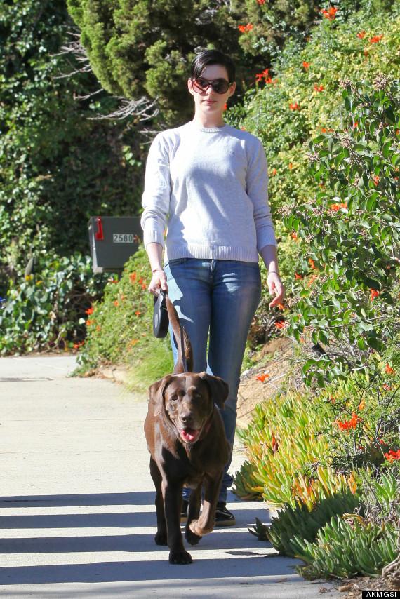 Anne Hathaway passeando com sua cachorra Esmeralda. (Foto: Reprodução / Huffington Post)