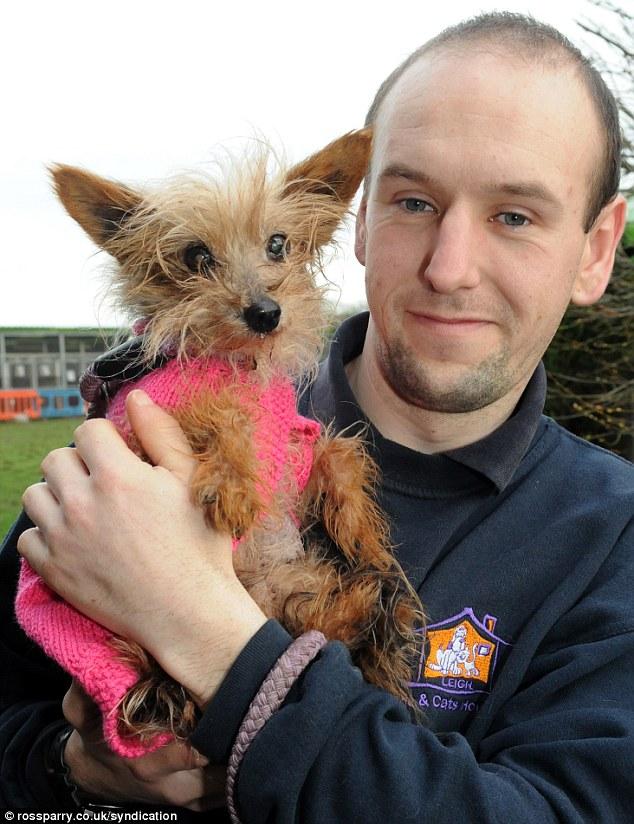 O cachorro com James Harrison, do abrigo Leigh Cats and Dogs Home. (Foto: Reprodução / Daily Mail)