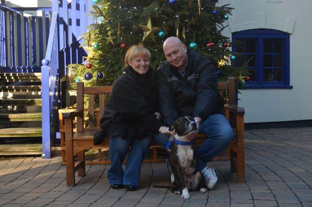Buddy com sua nova família. (Foto: Reprodução / Telegraph)