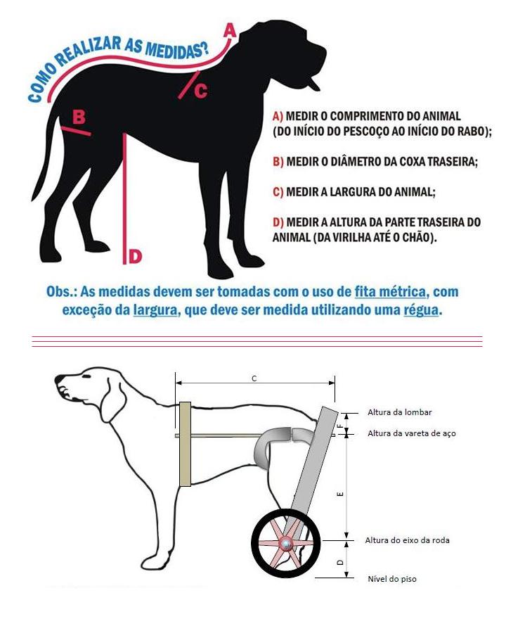Como montar um carrinho de rodas para um cachorro em casa. Foto: Reprodução/Facebook