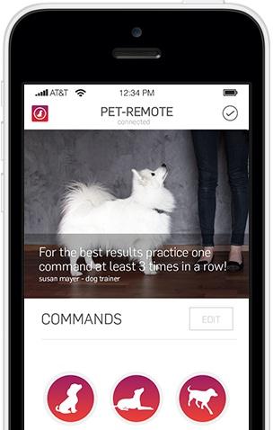O Pet-Remote permite dar comandos de longe do seu cachorro. (Foto: Reprodução / Pet-Remote)