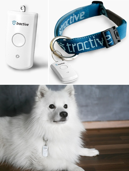 pet-remote-03