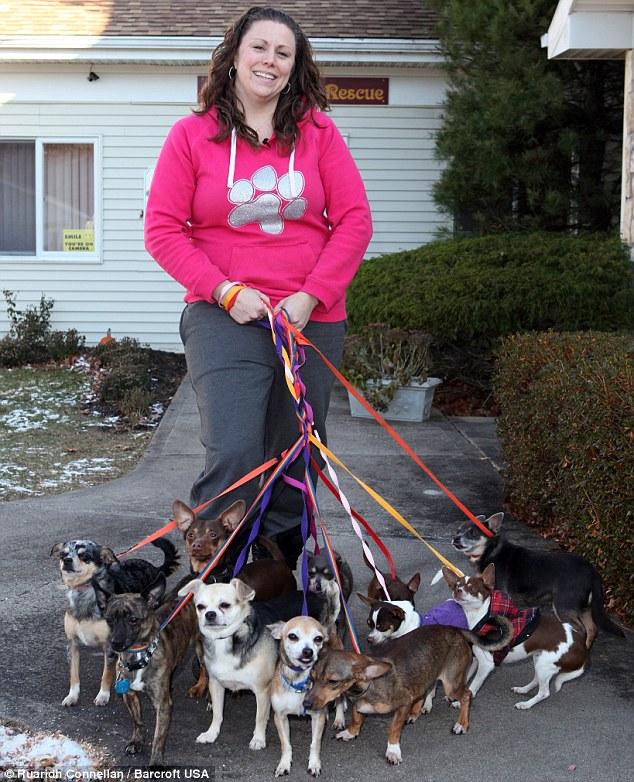 Laura Zambito diz que as pessoas precisam entender que os chihuahuas não são um acessório de moda. (Foto: Reprodução / Daily Mail uk)
