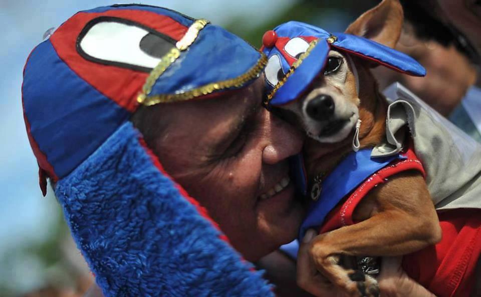 Não esqueça de fantasiar seu cão. (Foto: Reprodução / Facebook)