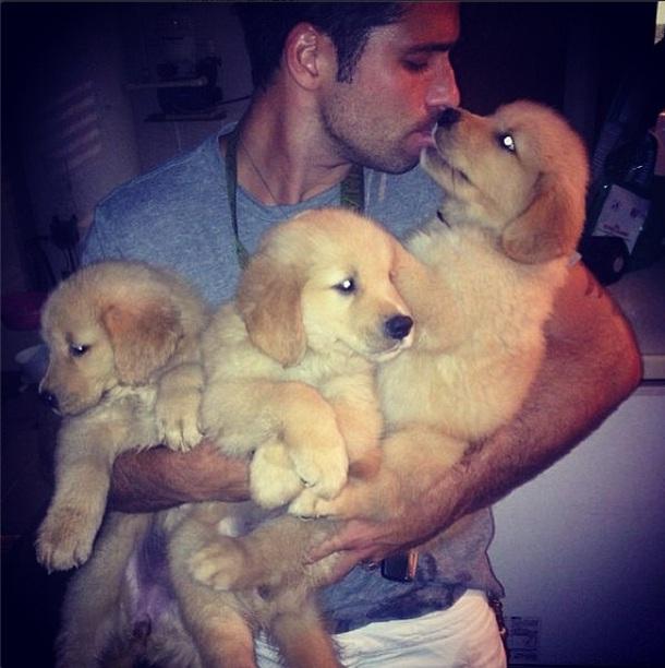 Bruno Gagliasso recebe carinho de três cachorrinhos. (Foto: Reprodução / Instagram)