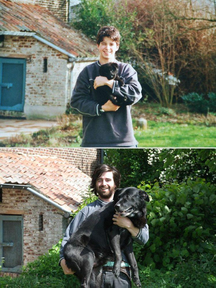 cachorros-antes-depois-tempo (5)