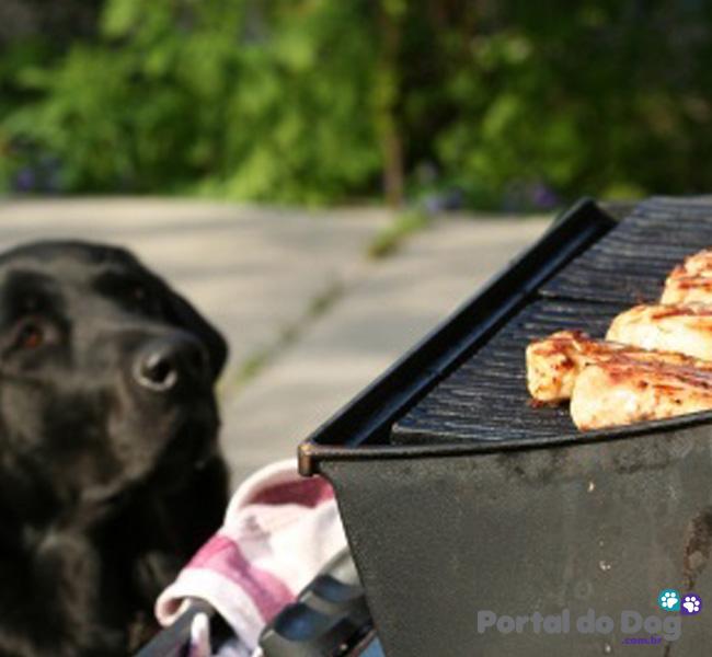 cachorros-embaixo-mesa-comida-30