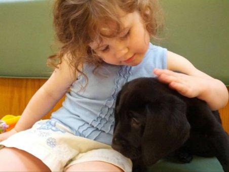 cachorros-indo-veterinario-011