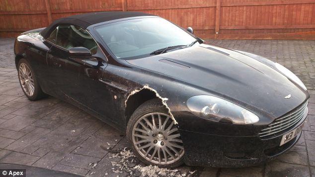 Estrago causado pela cachorra Luce no carro de luxo. (Foto: Reprodução / Daily Mail)