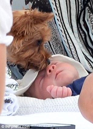O cão deu uma lambida no bebê Eric. (Foto: Reprodução / Daily Mail)