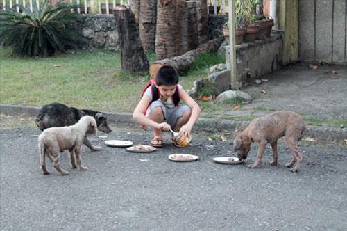 Ken alimentando os animais. Foto: Reprodução / imgur